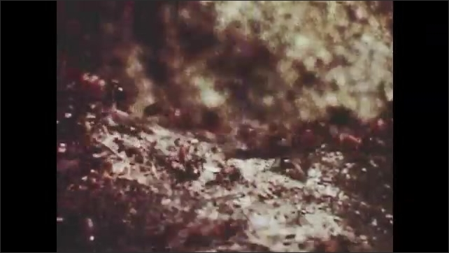 1950s: UNITED STATES: time lapse of plant growing. Ants on ground. Close up of ants on ground. Forest and plants. Lilly flower and pads in pond.