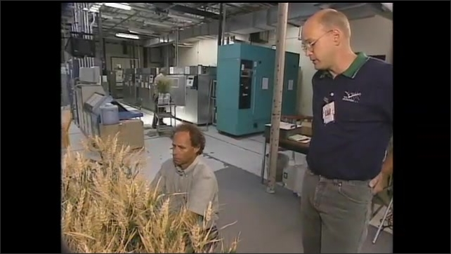 1990s: UNITED STATES: plant research in space. Life Support and crop systems for space travel. Man talks to camera.