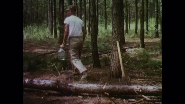 1950s: Young man chops at felled tree.  Boy carries jug to stream and fills with water.