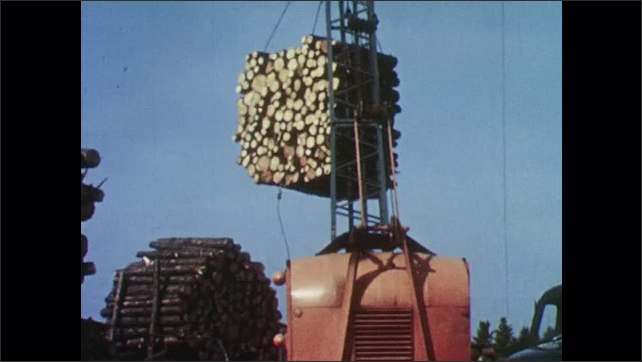1950s: Trucks move logs.  Crane lowers load of logs onto ground.  Stacked wood.