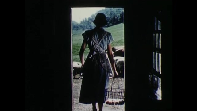 1950s: Chicken. Woman gathers eggs from chicken coop. Woman walks out of coop, looks at cows and pigs, walks away.