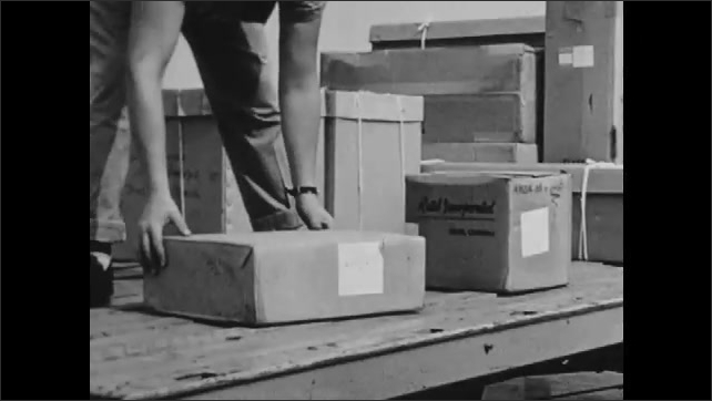 1960s: Man picks up cardboard boxes and tubes coming down conveyer belt out of plane, passes to other man, loads onto platform, arranges items.
