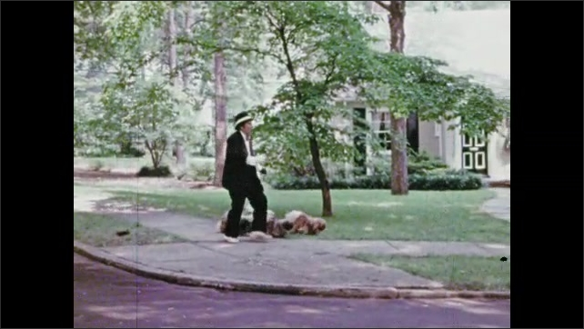1970s: Man with several dogs on leashes walks down sidewalk and speaks to man, woman and boy.