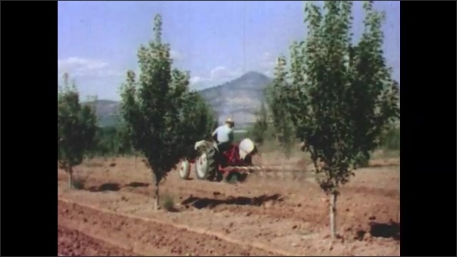 1950s: Man drives farm equipment. Man smokes pipe. View of mountains, forest. Tractor drives through field. Tractor in field. Girl looks at view from tree. Views of men working in field.