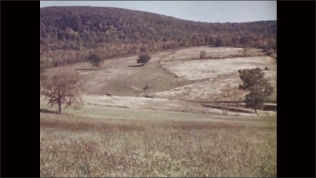 1960s: UNITED STATES: clouds move across sky. View across landscape with fields and trees. Horse in landscape