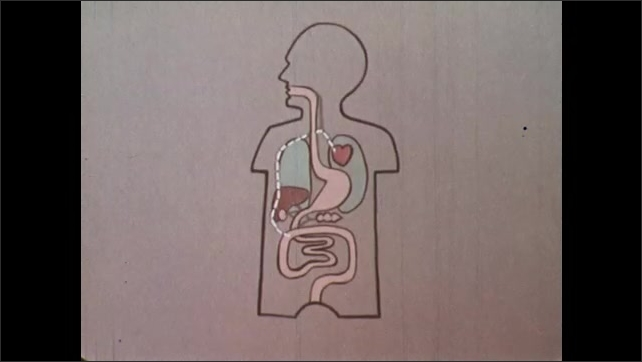 1970s: Magnified parasites wriggle and writhe. Cartoon animation of path parasite takes from stomach to heart. Cartoon worm expands and shows his teeth.