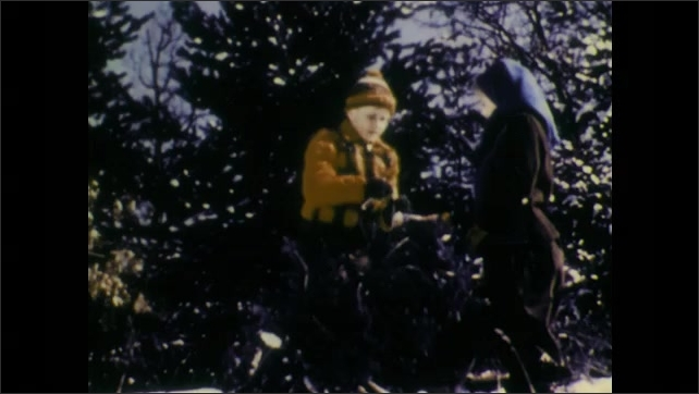 1940s: Girl smiles. Boy carries pine tree and places it on sled. Girl and boy tie tree to sled. Hands tie rope in knot around tree.