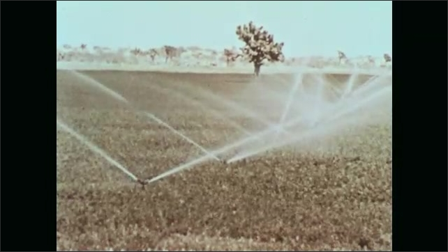 1960s: UNITED STATES: adjustable opening in pipe. Water flows into burrows on farm. Basin contains water. Overhead sprinkler waters crops.
