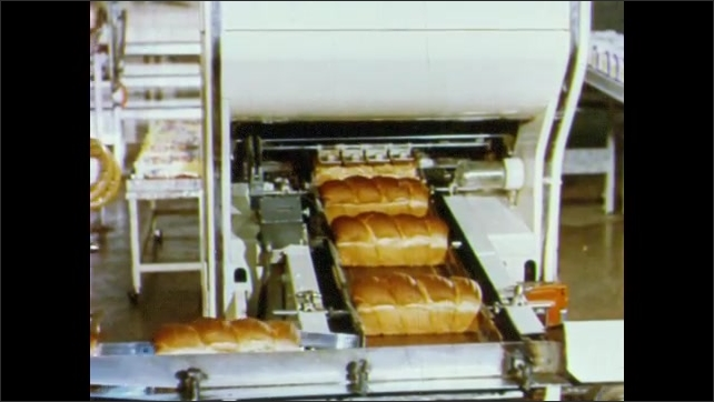 1950s: Loaves of bread travel down slide, move along conveyor belts to slicing and wrapping machine.