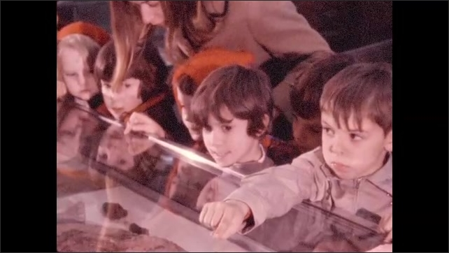 1970s: Cross-section of dirt or rock. Young schoolchildren and chaperone look at glass-covered exhibit case. Snake.