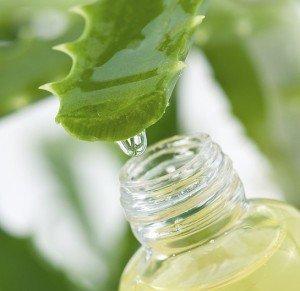 The Many Benefits of Aloe Vera Juice Drink