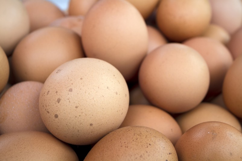 eggs weight loss tips