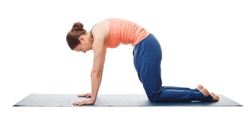 cat pose yoga
