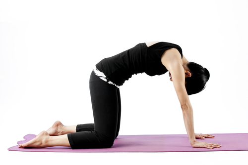 Cat Pose - Marjaryasana