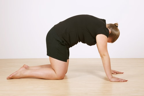 cow pose yoga