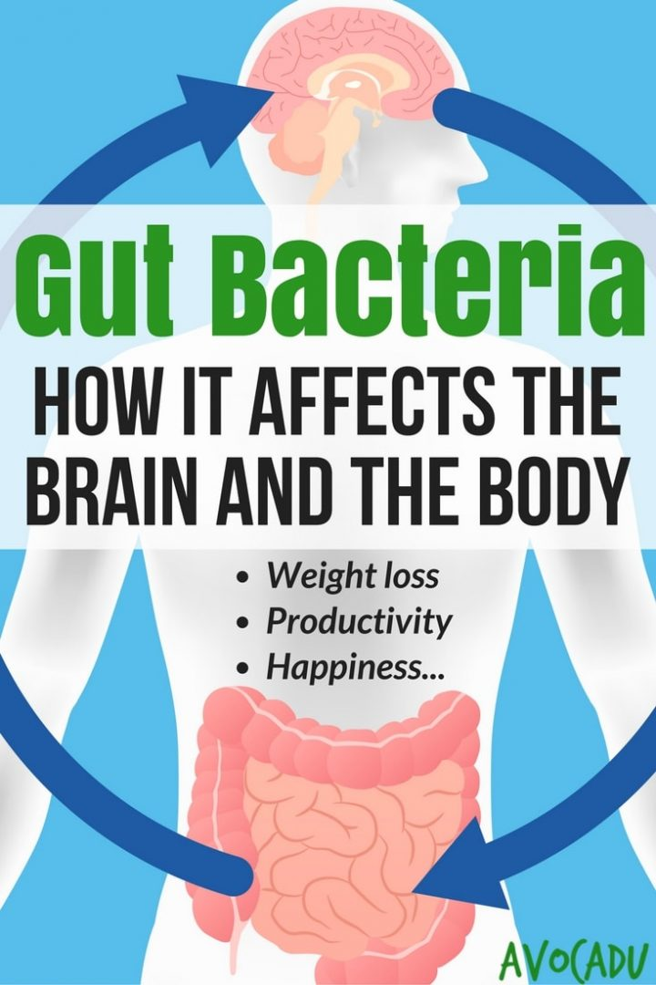 How Gut Bacteria Affects the Body and the Brain | Weight Loss | Avocadu.com