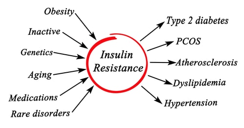 high insulin can cause PCOS