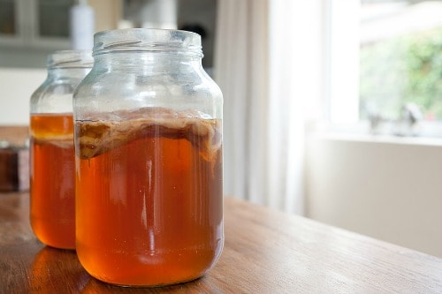 kombucha detox tea to lose weight