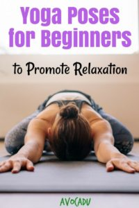yoga poses for beginners to promote relaxation  avocadu