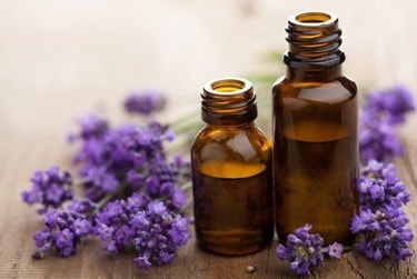 non-toxic essential oils