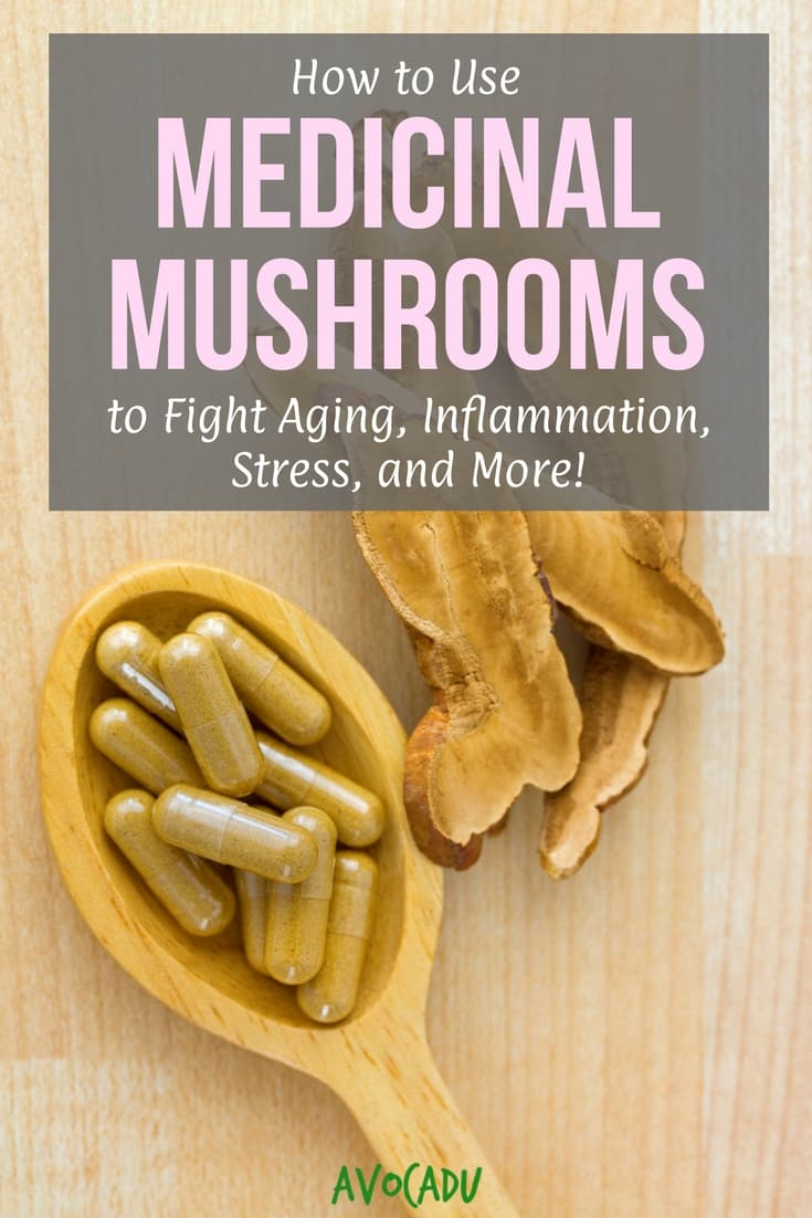 How to Use Medicinal Mushrooms to Fight Aging, Inflammation, Stress, and More | Avocadu.com