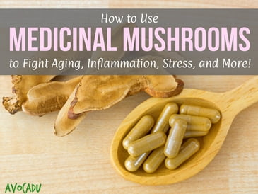 How to Use Medicinal Mushrooms to Fight Aging, Inflammation, Stress, and More