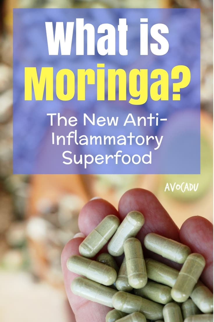 Moringa is a new anti-inflammatory superfood powder that is a great supplement for gut health, blood sugar, and more! | Avocadu.com