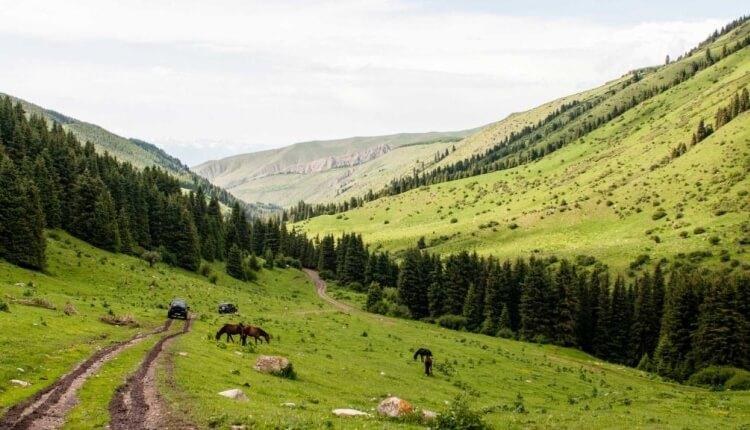 Kyrgyzstan Mission Trip