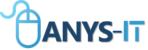 ANYS-IT INC