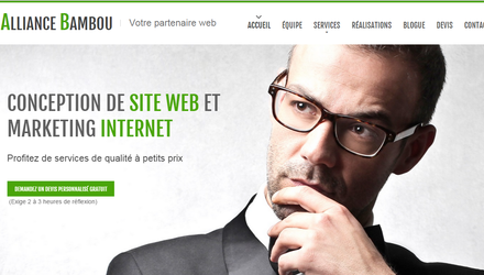 Conception de Site Web Professsionnel
