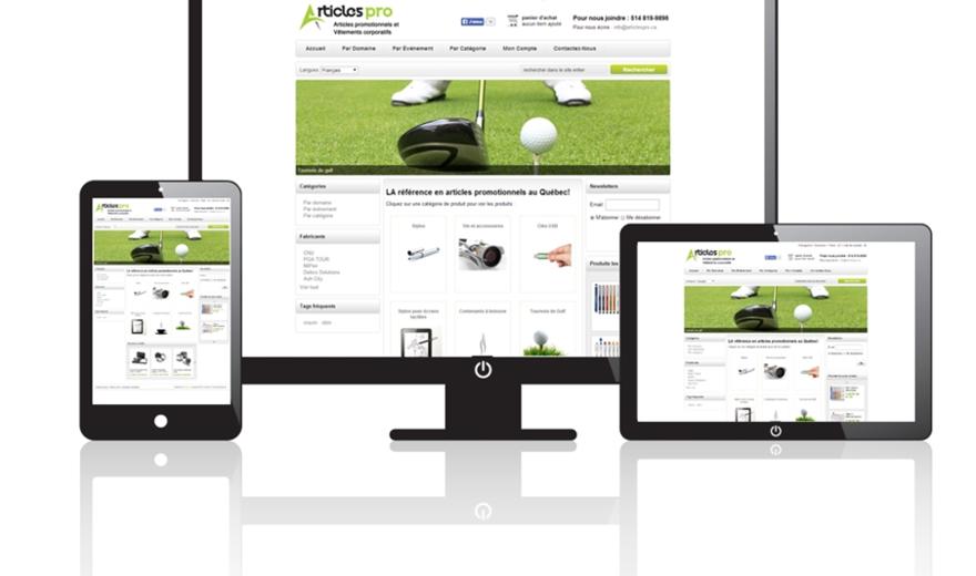 Conception Site Web à Boisbriand - Articles Pro