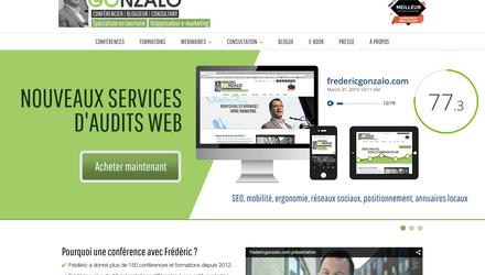 Site Web transactionnel, Frédéric Gonzalo, Consultant