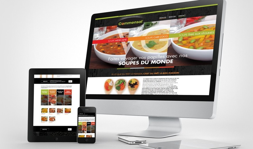 Création, intégration et programmation du site web