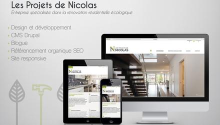 Les projets de Nicolas