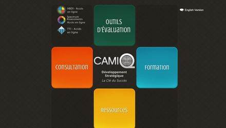 Site web de Camiq Inc.