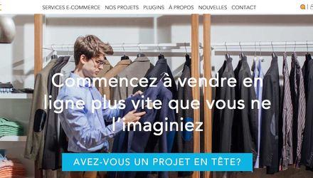 Agence web montreal - expert web en commerce électonique
