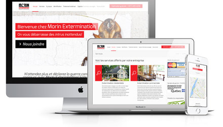 CONCEPTION DE SITE WEB WORDPRESS POUR MORIN EXTERMINATION