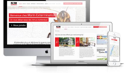 CONCEPTION DE SITE WEB WORDPRESS POUR MORIN EXTERMINATION
