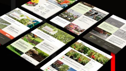 Site Web de PME