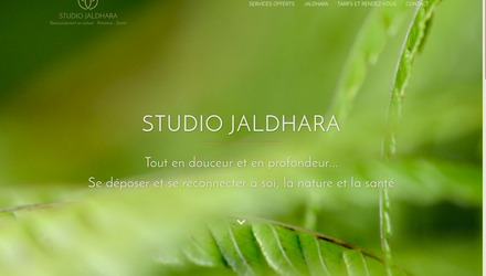 studio Jaldhara