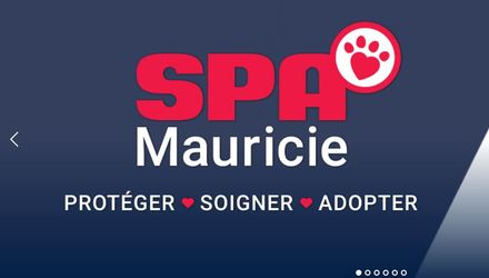SPA Mauricie | Site web adaptatif | Gestion personnalisée