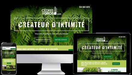 Création du site web de Cèdres En Gros