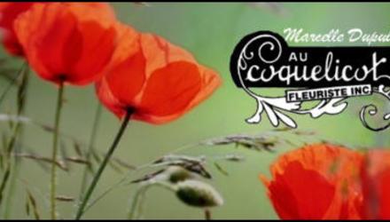 Fleuriste Coquelicot