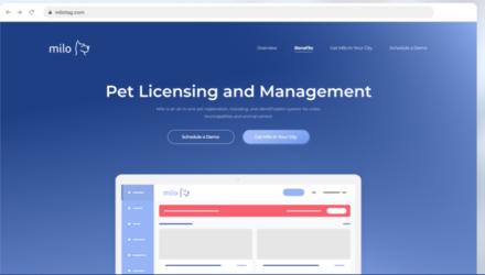 Design d'un site intuitif avec une base de donner accessible.