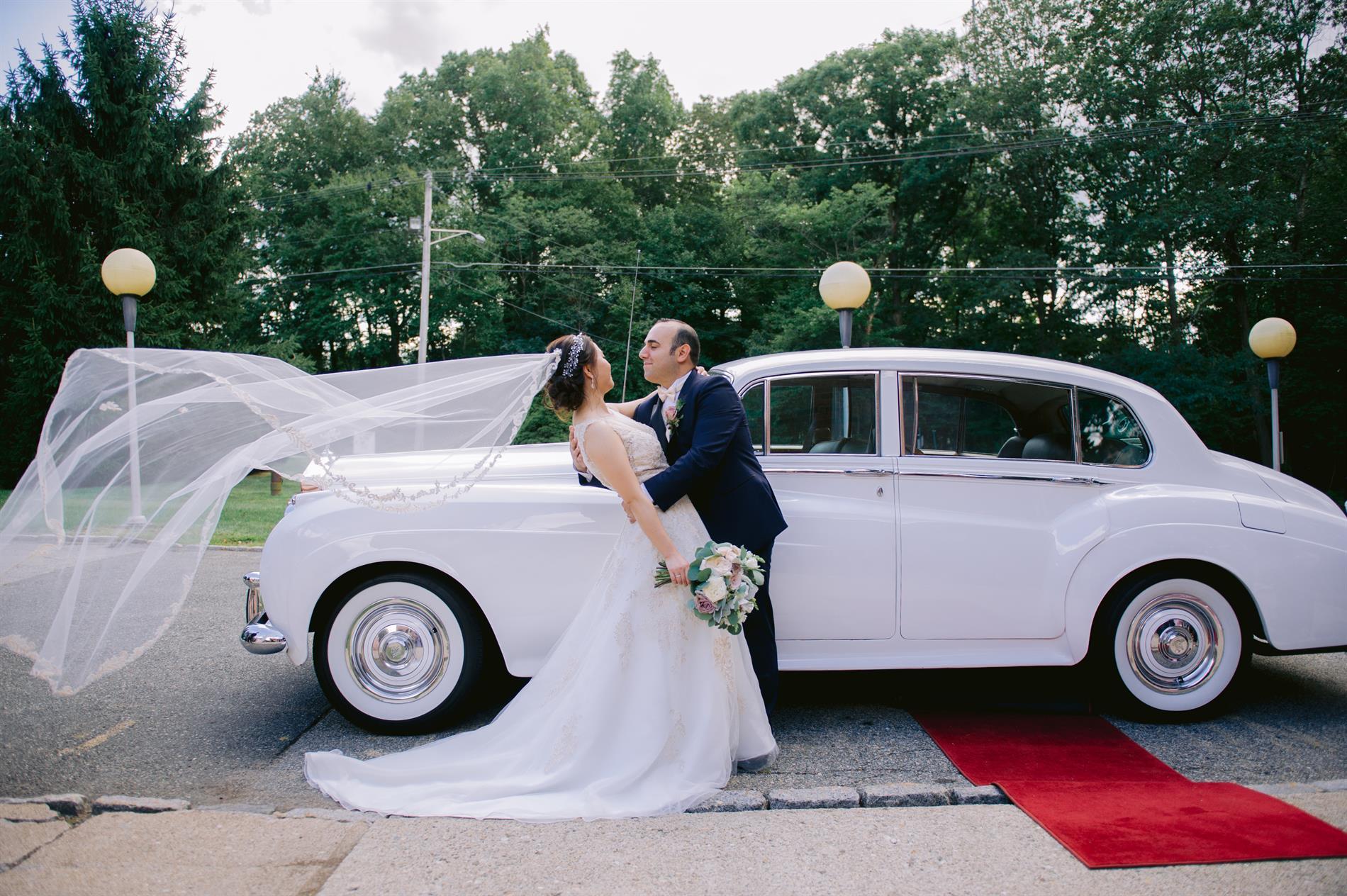 Veronica and Demetrios Wedding Photos