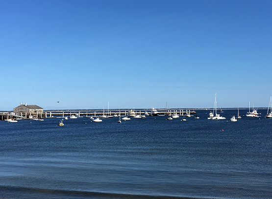 PTOWN Harbor