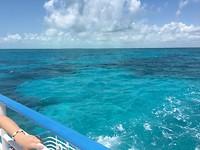 John Pennenkamp Coral Reef Statepark