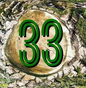 33 in het Groen