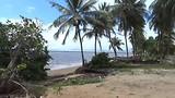 Galibi, Frans Guyana & Schildpadden tour