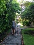 Onze jungle die het Mercure resort Sanur heet